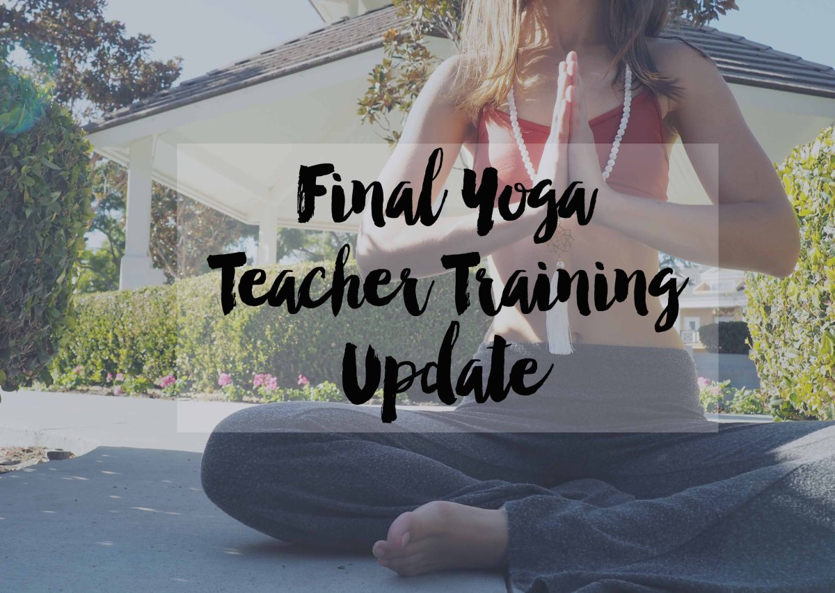 Final Yoga Teacher Training Update